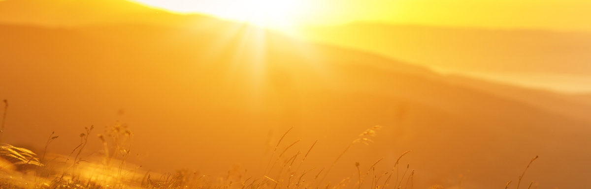 Ranking the best vitamin D of 2021
